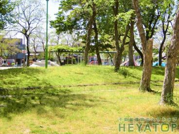中江公園の画像1