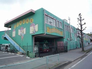 朝霞花の木幼稚園の画像1