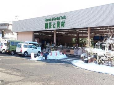 綿半ホームエイド相模湖店の画像1