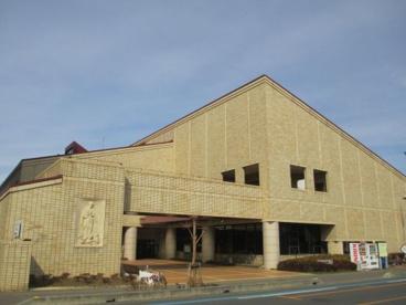 坂戸市立中央図書館の画像1