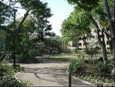 中央通りさくら並木公園