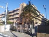 千葉大学薬学部