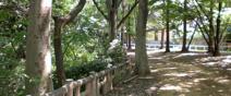 都立和田堀公園