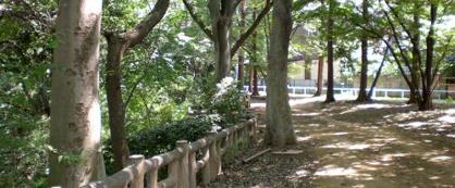 都立和田堀公園の画像1