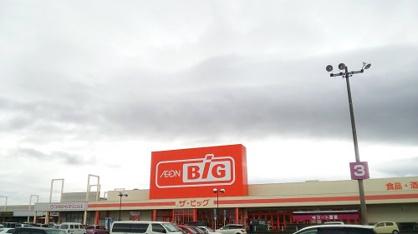 ザ・ビッグ 輪之内店の画像1