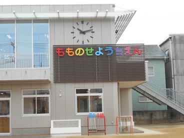 認定こども園学校法人齋藤学園桃瀬幼稚園の画像1