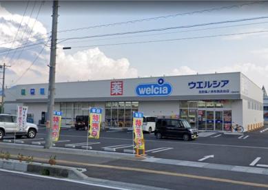 ウエルシア長野篠ノ井布施高田店の画像1