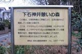 下石神井緑地