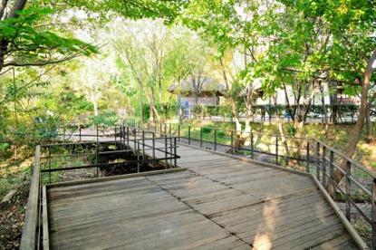 赤羽自然観察公園の画像1