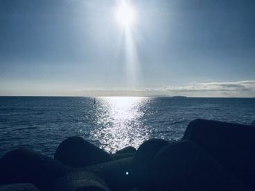 湯河原海浜公園の画像1