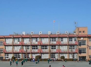前橋市立桃木小学校の画像1