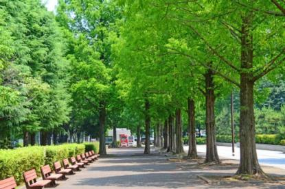 朝霞中央公園の画像1