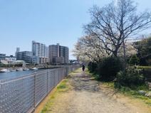 第3号境川緑地
