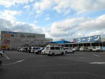 ホームセンターコーナン 金岡蔵前店