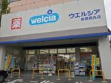 ウエルシア板橋徳丸店