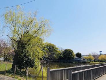 桜小路公園の画像2