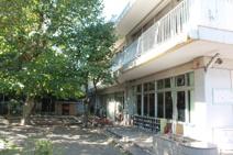 桐朋幼稚園