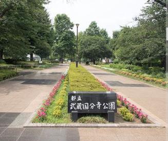 武蔵国分寺公園の画像1
