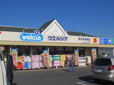 ウエルシア鶴ヶ島藤金店の画像1
