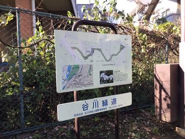 谷川緑道の画像1