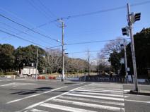 大阪府営 大泉緑地