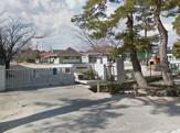 沖洲幼稚園