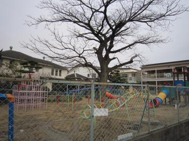 浜寺聖書幼稚園の画像3