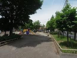 一本木公園の画像1