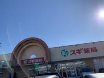 スギ薬局 ドミー幸田店