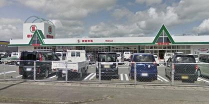 新鮮市場 花高松店の画像1