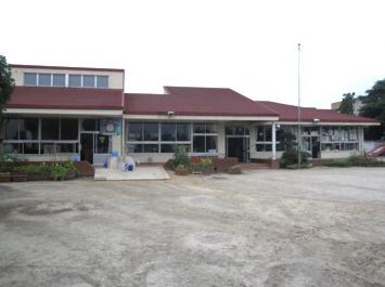綿打幼稚園の画像1