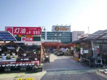 セキチュー 狭山北入曽店