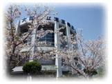 天王寺高等学校