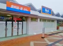 ビッグ・エー 習志野袖ヶ浦団地店