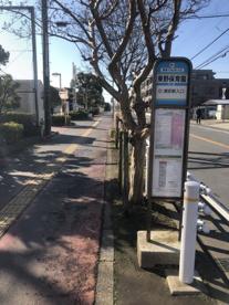 「東野保育園(⑤浦安駅入口)」 バス停の画像1