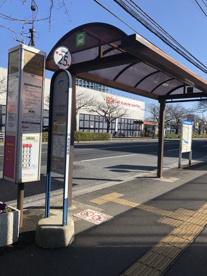 「市役所入口・郵便局前(④⑧⑫浦安駅入口)」 バス停の画像1