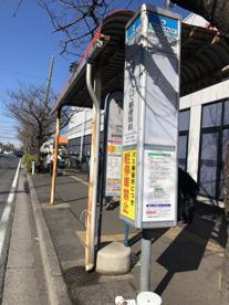 「市役所入口・郵便局前(④⑧⑫新浦安駅)」 バス停の画像1