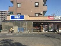 ビッグ・エー 松戸六高台店
