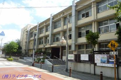 野中小学校の画像1