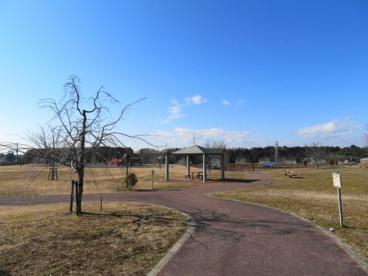 テクノさくら公園の画像4