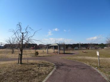 テクノさくら公園の画像5