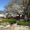 東玉川第二公園