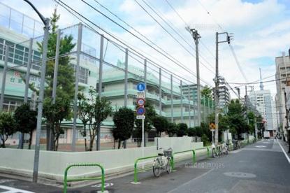 台東区立松葉小学校の画像1