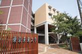 私立東京未来大学