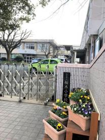 熊本市立桜木小学校の画像1