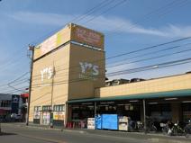Y's mart Discover(ワイズマートディスカ) 西船本郷店