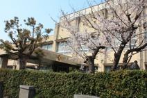 堺市立 浜寺昭和小学校