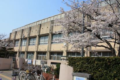 堺市立 浜寺昭和小学校の画像4