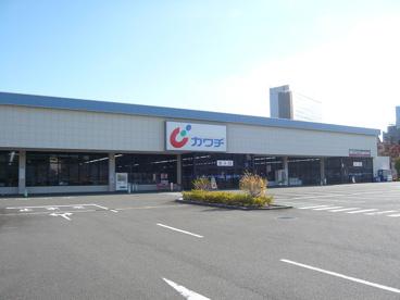 カワチ薬品 多摩ニュータウン店の画像1