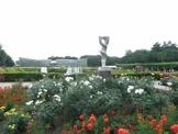 大沢雑木林公園